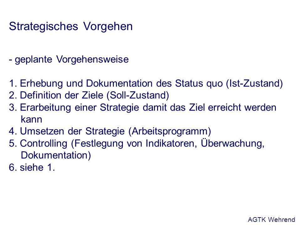 Strategisches Vorgehen - geplante Vorgehensweise 1.