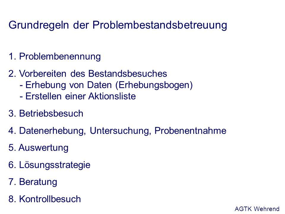 Grundregeln der Problembestandsbetreuung 1. Problembenennung 2.