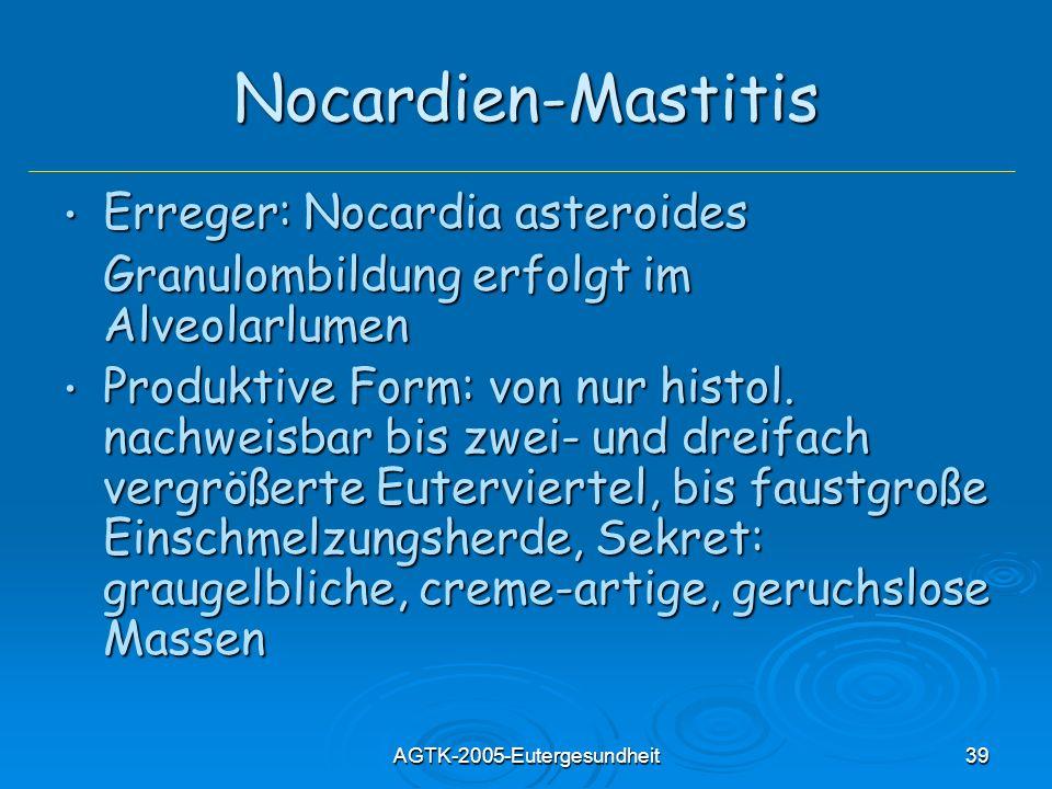 AGTK-2005-Eutergesundheit39 Nocardien-Mastitis Erreger: Nocardia asteroides Erreger: Nocardia asteroides Granulombildung erfolgt im Alveolarlumen Produktive Form: von nur histol.