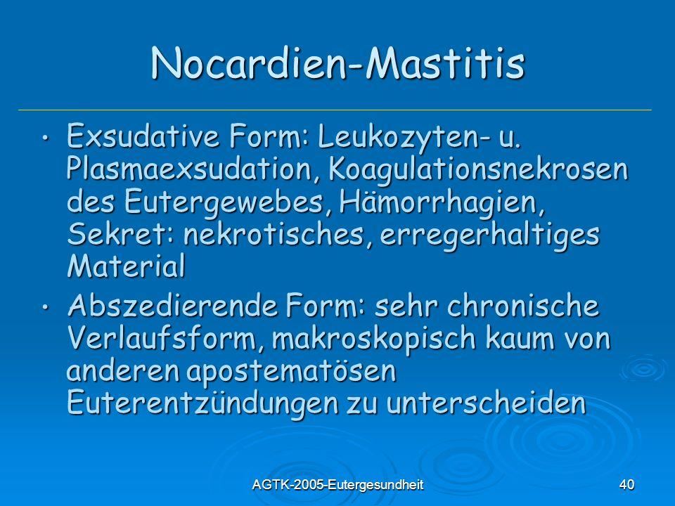 AGTK-2005-Eutergesundheit40 Nocardien-Mastitis Exsudative Form: Leukozyten- u. Plasmaexsudation, Koagulationsnekrosen des Eutergewebes, Hämorrhagien,