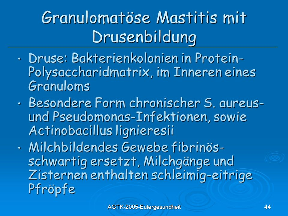 AGTK-2005-Eutergesundheit44 Granulomatöse Mastitis mit Drusenbildung Druse: Bakterienkolonien in Protein- Polysaccharidmatrix, im Inneren eines Granul