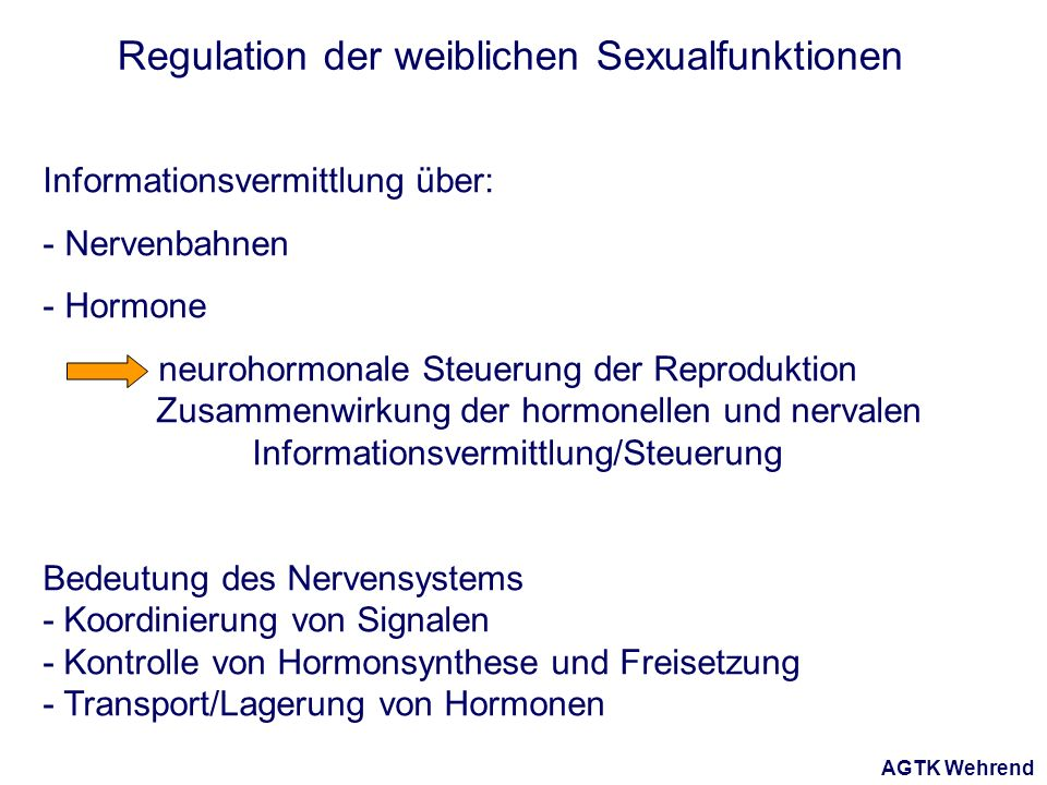 AGTK Wehrend Regulation der weiblichen Sexualfunktionen Informationsvermittlung über: - Nervenbahnen - Hormone neurohormonale Steuerung der Reproduktion Zusammenwirkung der hormonellen und nervalen Informationsvermittlung/Steuerung Bedeutung des Nervensystems - Koordinierung von Signalen - Kontrolle von Hormonsynthese und Freisetzung - Transport/Lagerung von Hormonen