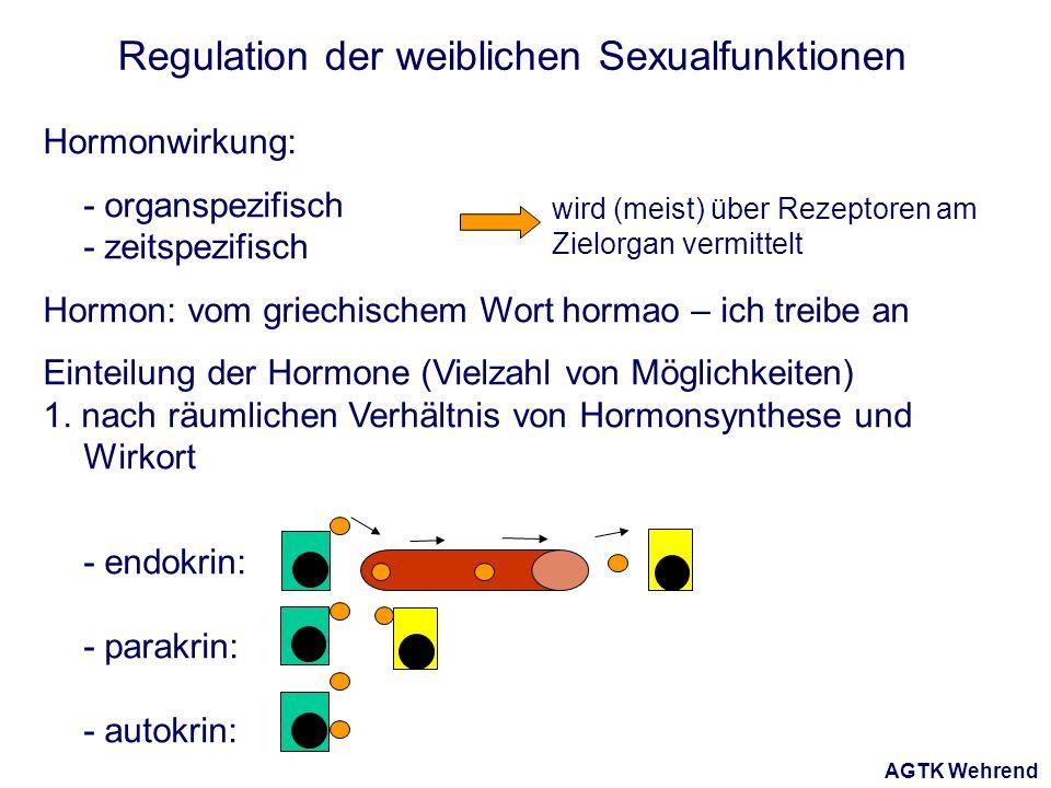 AGTK Wehrend Regulation der weiblichen Sexualfunktionen Hormonwirkung: - organspezifisch - zeitspezifisch Hormon: vom griechischem Wort hormao – ich treibe an Einteilung der Hormone (Vielzahl von Möglichkeiten) 1.