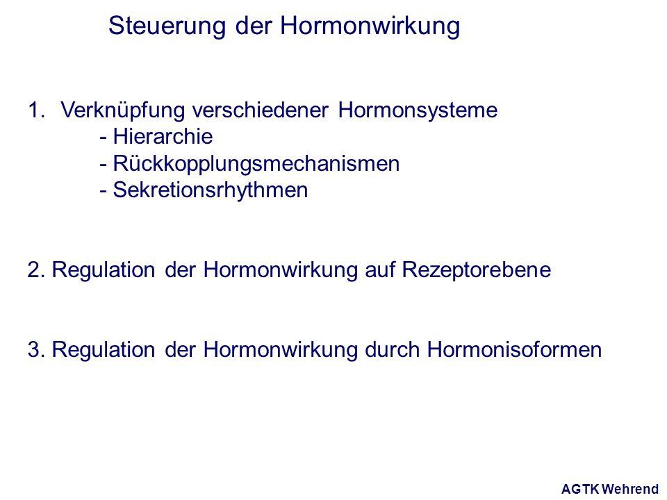 AGTK Wehrend Steuerung der Hormonwirkung 1.Verknüpfung verschiedener Hormonsysteme - Hierarchie - Rückkopplungsmechanismen - Sekretionsrhythmen 2.