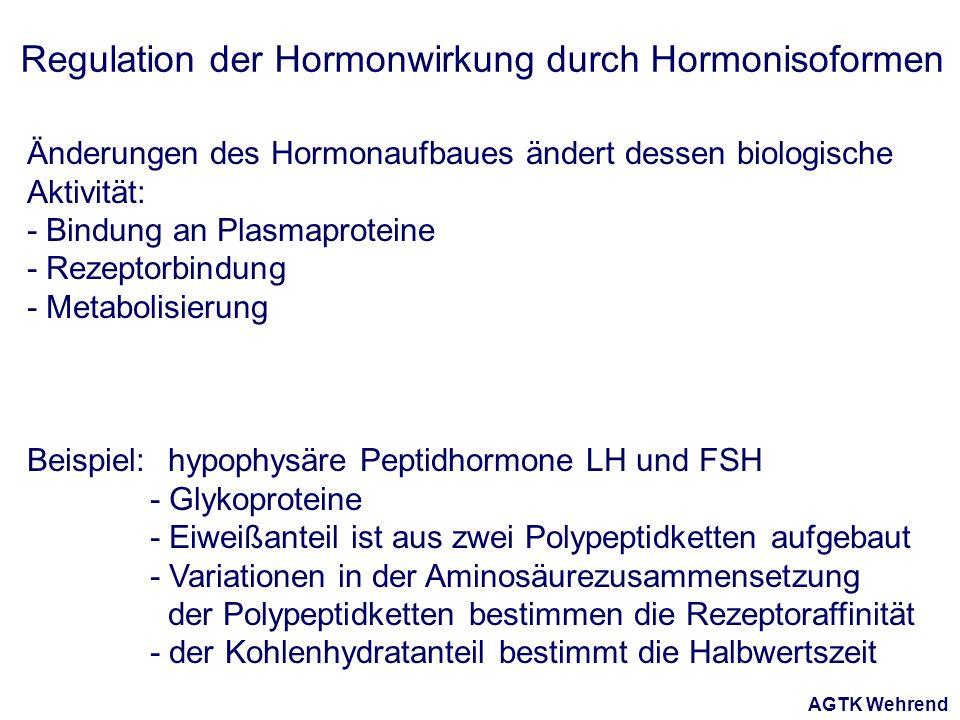 AGTK Wehrend Regulation der Hormonwirkung durch Hormonisoformen Änderungen des Hormonaufbaues ändert dessen biologische Aktivität: - Bindung an Plasmaproteine - Rezeptorbindung - Metabolisierung Beispiel: hypophysäre Peptidhormone LH und FSH - Glykoproteine - Eiweißanteil ist aus zwei Polypeptidketten aufgebaut - Variationen in der Aminosäurezusammensetzung der Polypeptidketten bestimmen die Rezeptoraffinität - der Kohlenhydratanteil bestimmt die Halbwertszeit