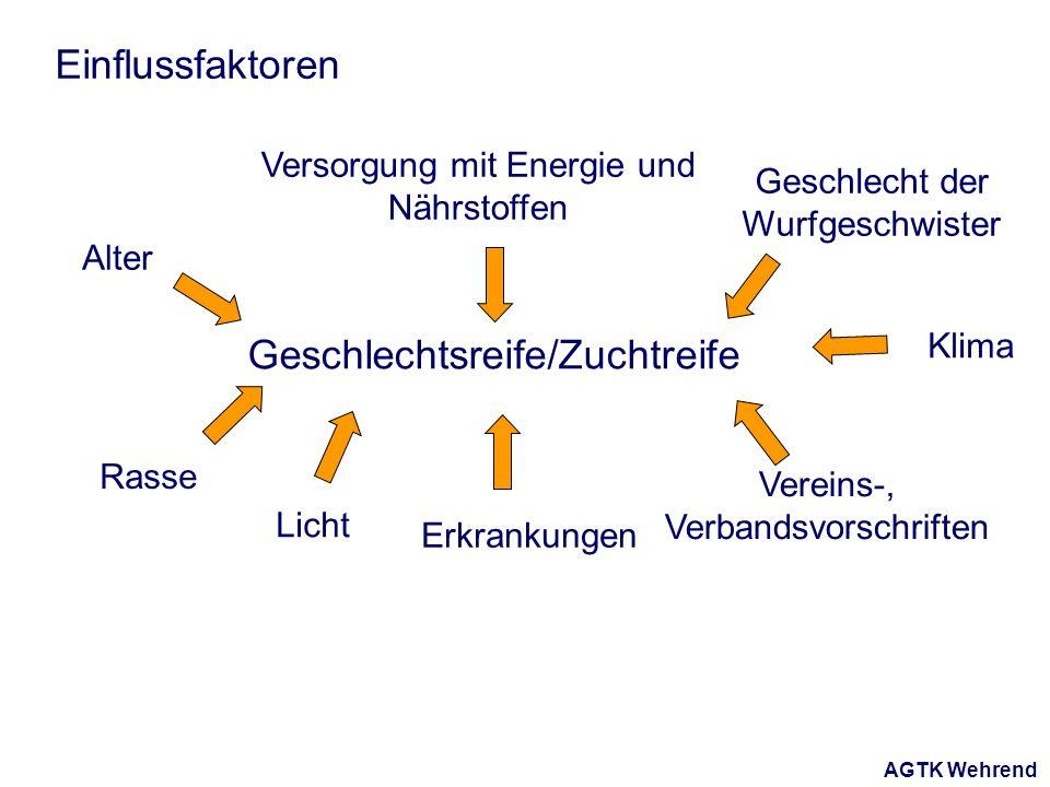 AGTK Wehrend Einflussfaktoren Geschlechtsreife/Zuchtreife Alter Rasse Versorgung mit Energie und Nährstoffen Licht Klima Vereins-, Verbandsvorschrifte