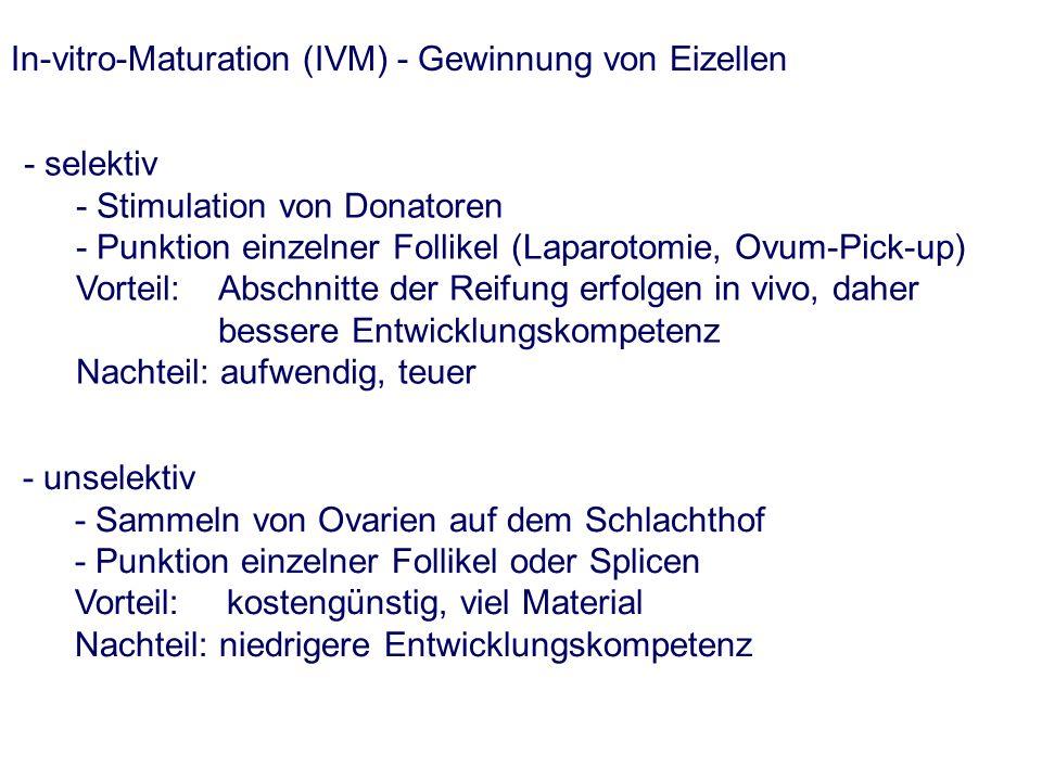 In-vitro-Maturation (IVM) - Gewinnung von Eizellen - selektiv - Stimulation von Donatoren - Punktion einzelner Follikel (Laparotomie, Ovum-Pick-up) Vorteil: Abschnitte der Reifung erfolgen in vivo, daher bessere Entwicklungskompetenz Nachteil: aufwendig, teuer - unselektiv - Sammeln von Ovarien auf dem Schlachthof - Punktion einzelner Follikel oder Splicen Vorteil: kostengünstig, viel Material Nachteil: niedrigere Entwicklungskompetenz