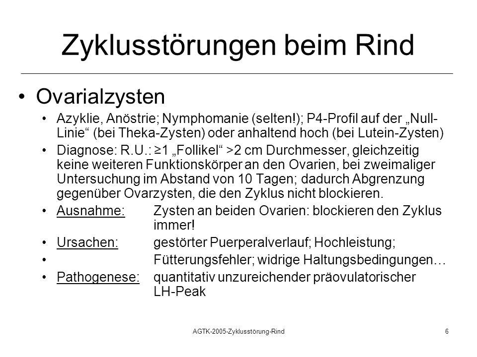 AGTK-2005-Zyklusstörung-Rind6 Zyklusstörungen beim Rind Ovarialzysten Azyklie, Anöstrie; Nymphomanie (selten!); P4-Profil auf der Null- Linie (bei Theka-Zysten) oder anhaltend hoch (bei Lutein-Zysten) Diagnose: R.U.: 1 Follikel >2 cm Durchmesser, gleichzeitig keine weiteren Funktionskörper an den Ovarien, bei zweimaliger Untersuchung im Abstand von 10 Tagen; dadurch Abgrenzung gegenüber Ovarzysten, die den Zyklus nicht blockieren.