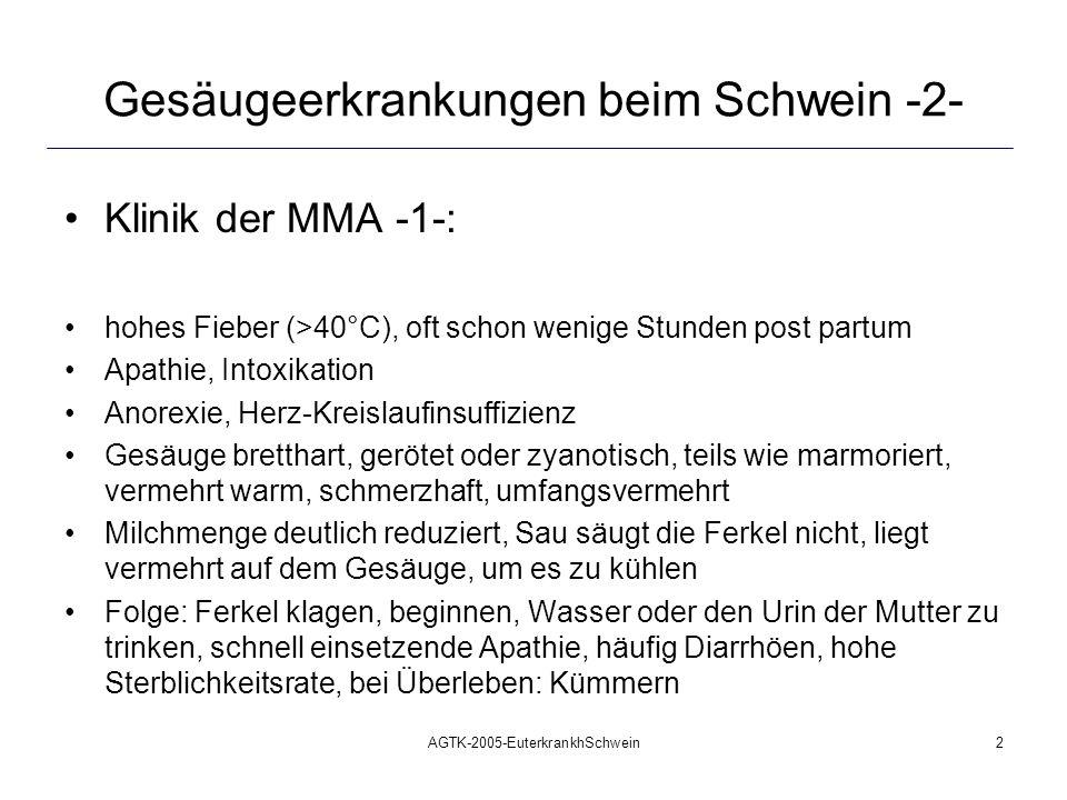 AGTK-2005-EuterkrankhSchwein2 Gesäugeerkrankungen beim Schwein -2- Klinik der MMA -1-: hohes Fieber (>40°C), oft schon wenige Stunden post partum Apat