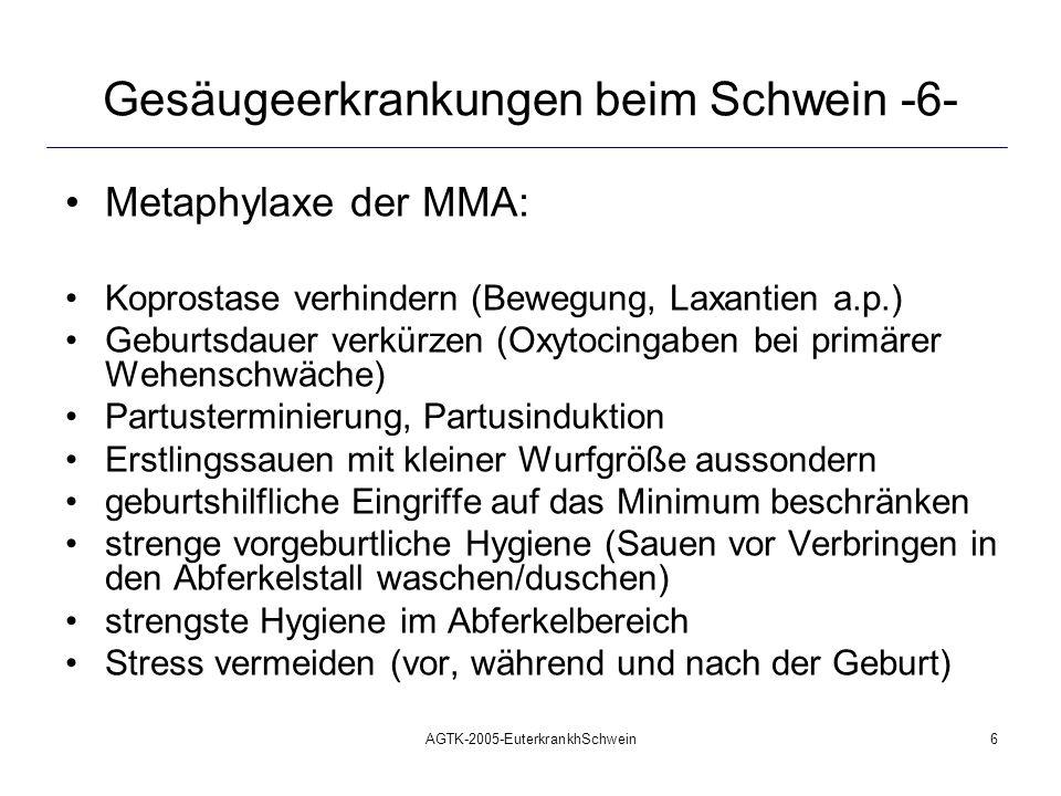 AGTK-2005-EuterkrankhSchwein7 Gesäugeerkrankungen beim Schwein -7- Vorgehensweise bei MMA als Bestandsproblem: Metaphylaxe betreiben B.U.-Proben entnehmen von: Lochien, Urin, Kot der Sau, Kot der Ferkel, Milch der Sau, inkl.