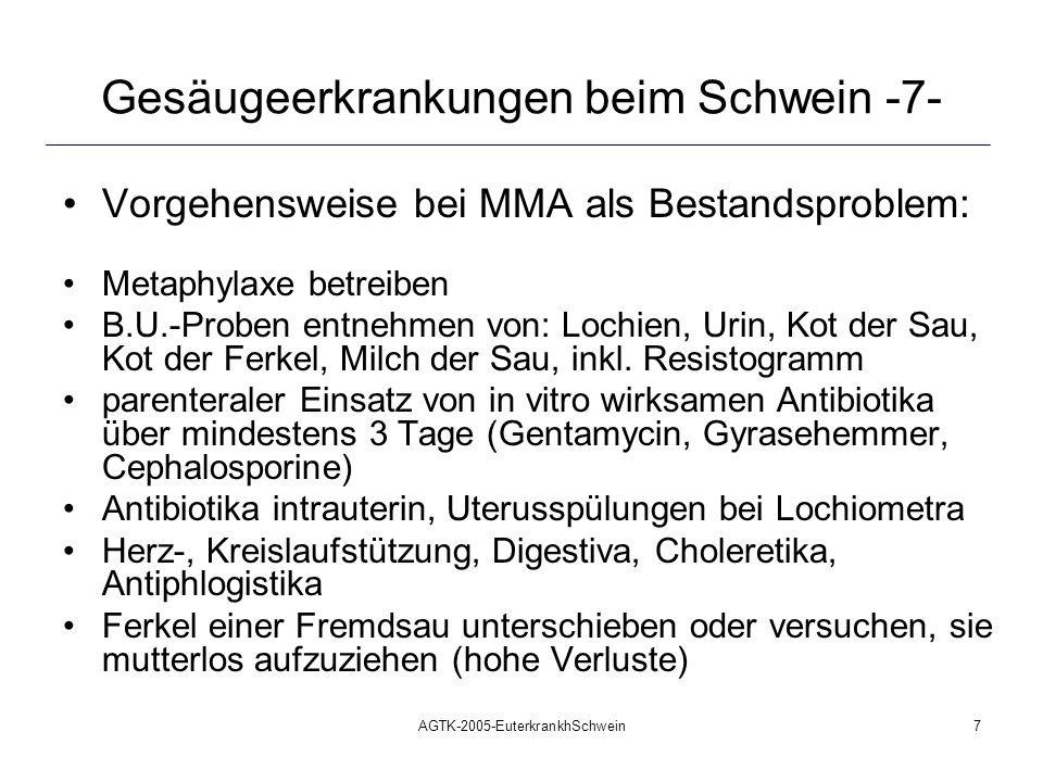 AGTK-2005-EuterkrankhSchwein7 Gesäugeerkrankungen beim Schwein -7- Vorgehensweise bei MMA als Bestandsproblem: Metaphylaxe betreiben B.U.-Proben entne
