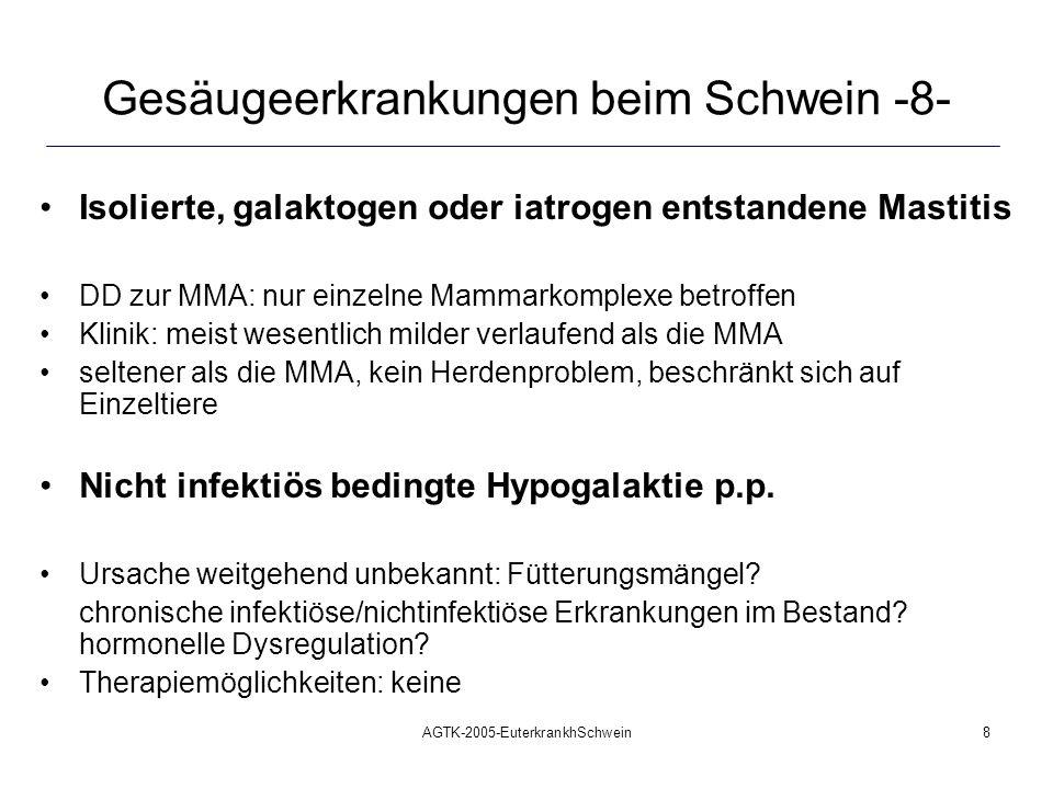 AGTK-2005-EuterkrankhSchwein8 Gesäugeerkrankungen beim Schwein -8- Isolierte, galaktogen oder iatrogen entstandene Mastitis DD zur MMA: nur einzelne M