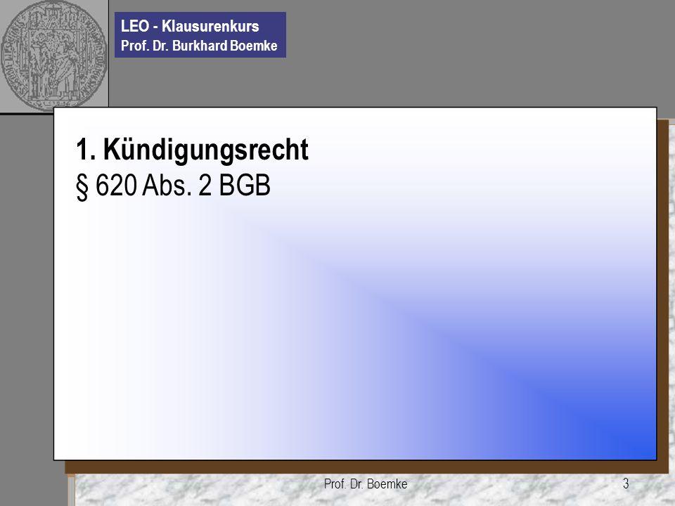 LEO - Klausurenkurs Prof.Dr. Burkhard Boemke Prof.