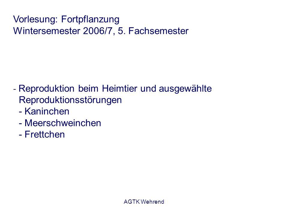 AGTK Wehrend Vorlesung: Fortpflanzung Wintersemester 2006/7, 5. Fachsemester - Reproduktion beim Heimtier und ausgewählte Reproduktionsstörungen - Kan