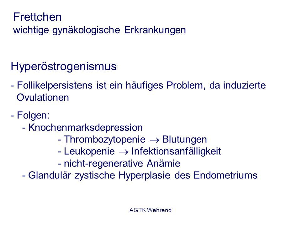 AGTK Wehrend Frettchen wichtige gynäkologische Erkrankungen Hyperöstrogenismus - Follikelpersistens ist ein häufiges Problem, da induzierte Ovulatione