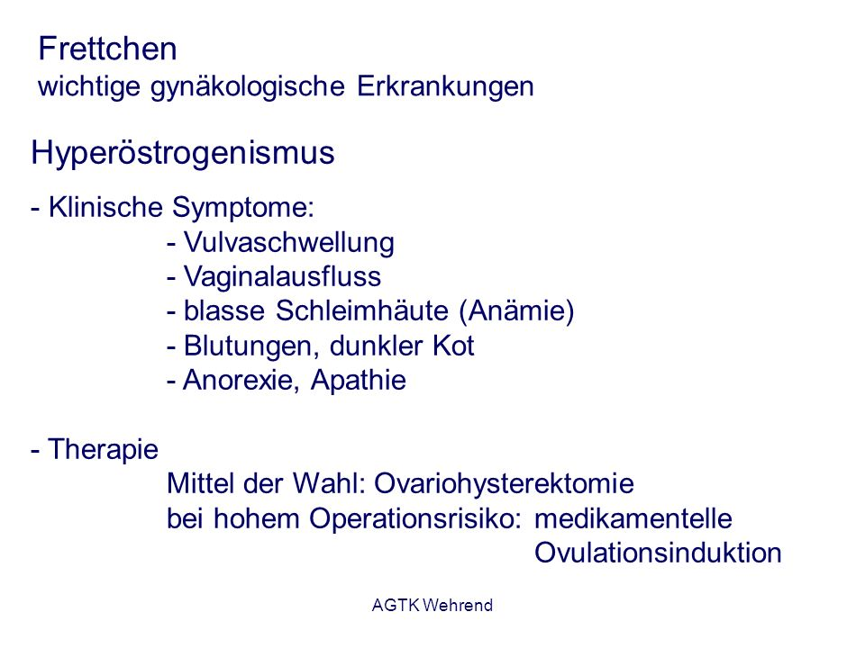 AGTK Wehrend Frettchen wichtige gynäkologische Erkrankungen Hyperöstrogenismus - Klinische Symptome: - Vulvaschwellung - Vaginalausfluss - blasse Schl