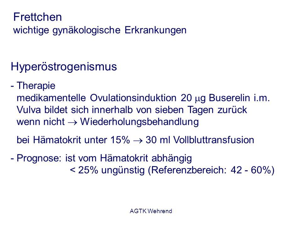 AGTK Wehrend Frettchen wichtige gynäkologische Erkrankungen Hyperöstrogenismus - Therapie medikamentelle Ovulationsinduktion 20 g Buserelin i.m. Vulva