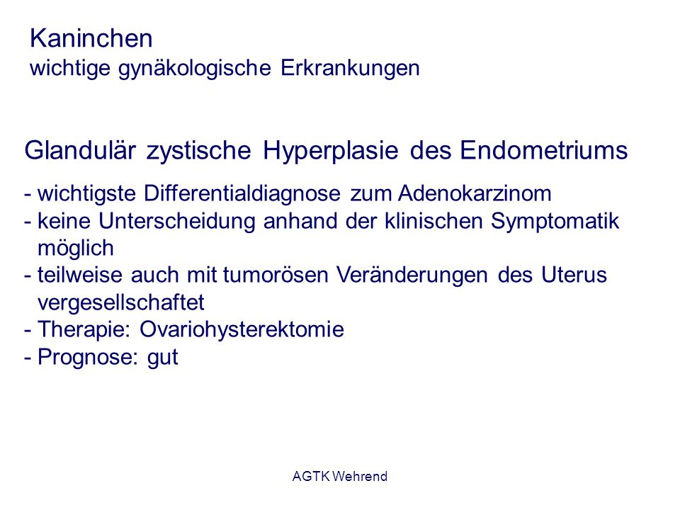 AGTK Wehrend Kaninchen wichtige gynäkologische Erkrankungen Pyometra - Eiteransammlung im Cavum uteri - häufig sind Pasteurellen am Geschehen beteiligt - in der Regel assoziiert mit zystischen Veränderungen - Therapie: Ovariohysterektomie - Alternativ: konservative Therapie mit Antigestagenen (2 mal 10 mg/kg Aglepristone im Abstand von 24 Std.