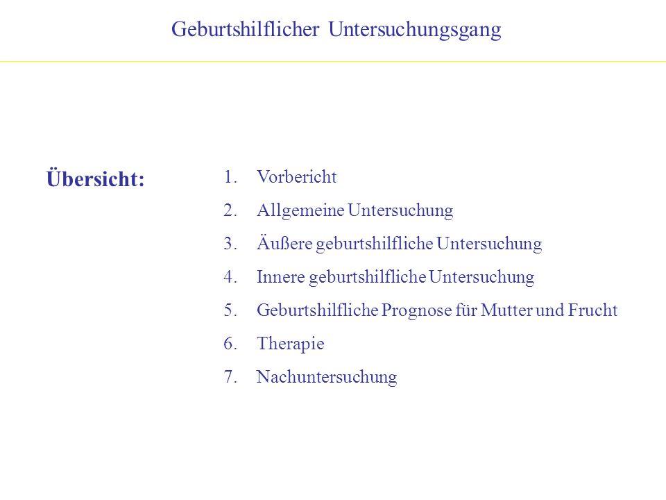 Übersicht: 1.Vorbericht 2.Allgemeine Untersuchung 3.Äußere geburtshilfliche Untersuchung 4.Innere geburtshilfliche Untersuchung 5.Geburtshilfliche Pro