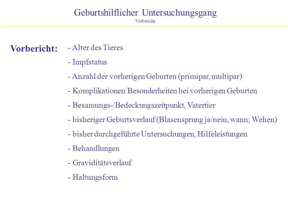 Geburtshilflicher Untersuchungsgang Allgemeine Untersuchung Allg.