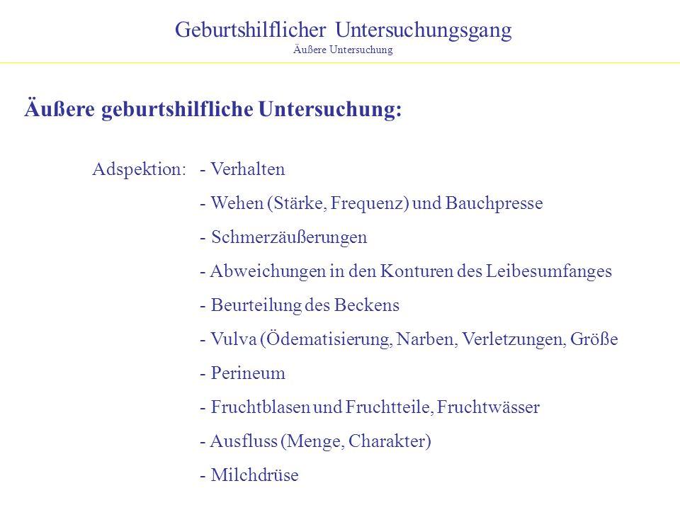 Geburtshilflicher Untersuchungsgang Äußere Untersuchung Äußere geburtshilfliche Untersuchung: Adspektion:- Verhalten - Wehen (Stärke, Frequenz) und Ba