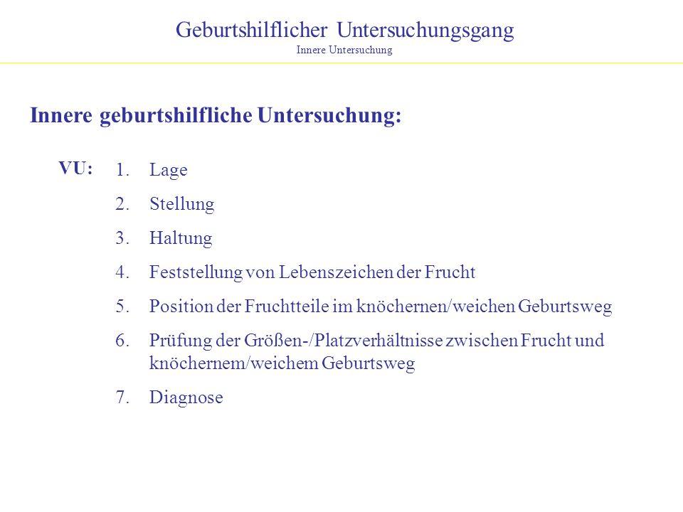 Geburtshilflicher Untersuchungsgang Innere Untersuchung Innere geburtshilfliche Untersuchung: 1.Lage 2.Stellung 3.Haltung 4.Feststellung von Lebenszei