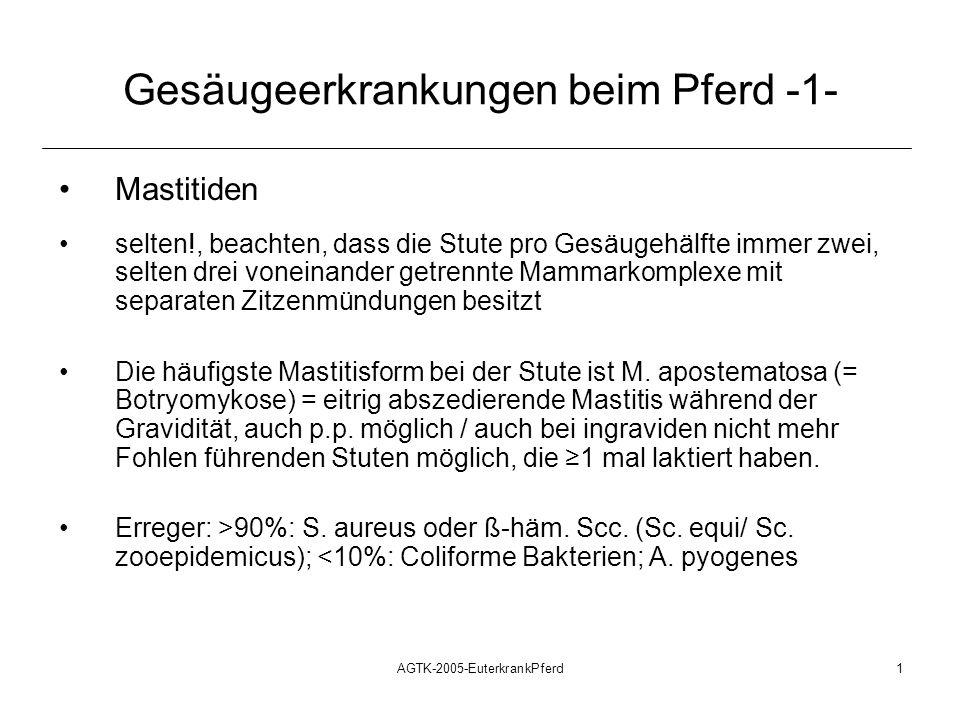 AGTK-2005-EuterkrankPferd1 Gesäugeerkrankungen beim Pferd -1- Mastitiden selten!, beachten, dass die Stute pro Gesäugehälfte immer zwei, selten drei v