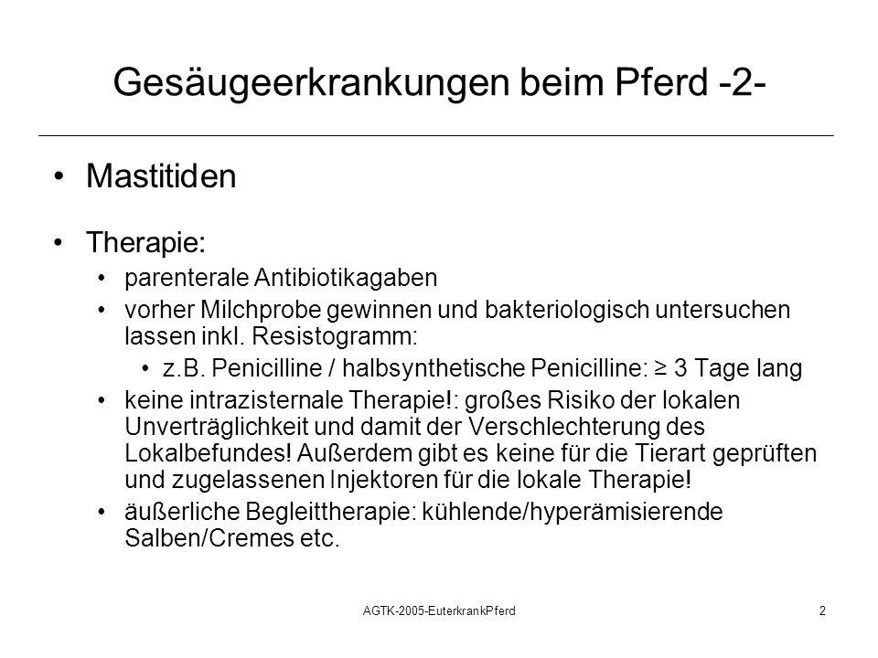AGTK-2005-EuterkrankPferd3 Gesäugeerkrankungen beim Pferd -3- Milchstau/Mastitiden nach dem Absetzen des Fohlens (selten) Ursache: während der Laktation chronisch-katarrhalische oder subklinische Mastitis mit dem Ruhen der Laktation: Toxin- und Erregerstau: klinisch apparente Mastitis Therapie: Wie bei der akuten Mastitits: Antibiotika parenteral regelmäßiges Ausmelken, äußerliche Begleittherapie Prophylaxe: Gesäuge innerhalb der ersten Woche nach dem Absetzen des Fohlens regelmäßig kontrollieren.