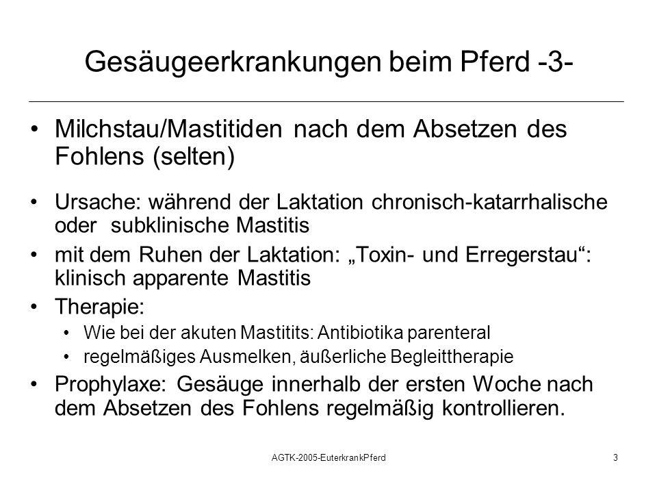 AGTK-2005-EuterkrankPferd3 Gesäugeerkrankungen beim Pferd -3- Milchstau/Mastitiden nach dem Absetzen des Fohlens (selten) Ursache: während der Laktati