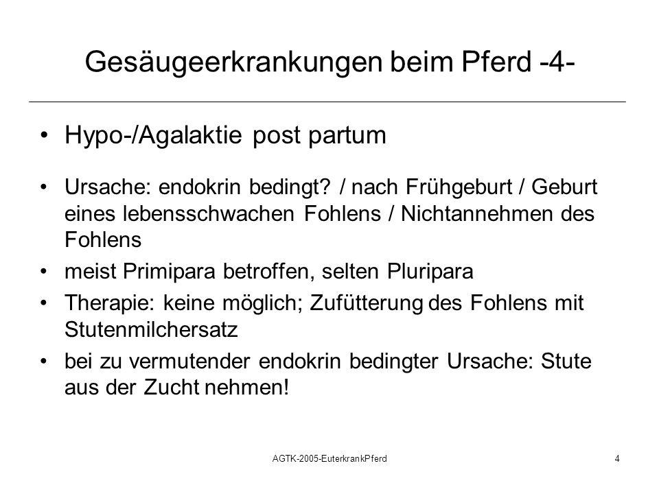 AGTK-2005-EuterkrankPferd4 Gesäugeerkrankungen beim Pferd -4- Hypo-/Agalaktie post partum Ursache: endokrin bedingt? / nach Frühgeburt / Geburt eines