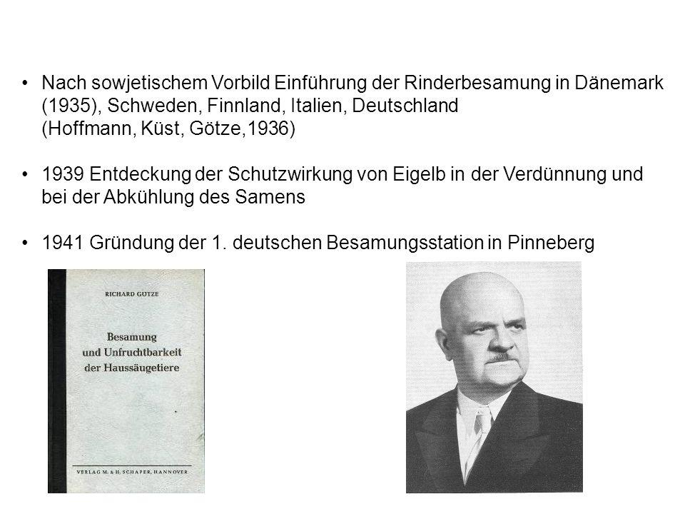 Nach sowjetischem Vorbild Einführung der Rinderbesamung in Dänemark (1935), Schweden, Finnland, Italien, Deutschland (Hoffmann, Küst, Götze,1936) 1939