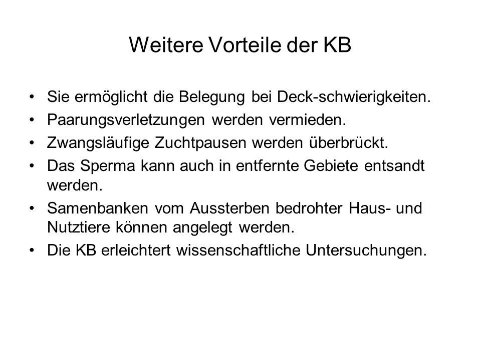 Weitere Vorteile der KB Sie ermöglicht die Belegung bei Deck-schwierigkeiten. Paarungsverletzungen werden vermieden. Zwangsläufige Zuchtpausen werden