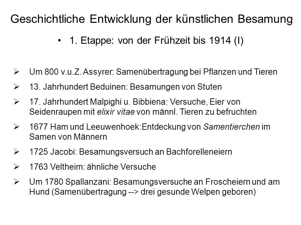Geschichtliche Entwicklung der künstlichen Besamung 1. Etappe: von der Frühzeit bis 1914 (I) Um 800 v.u.Z. Assyrer: Samenübertragung bei Pflanzen und