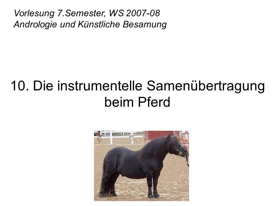Vorlesung 7.Semester, WS 2007-08 Andrologie und Künstliche Besamung 10. Die instrumentelle Samenübertragung beim Pferd