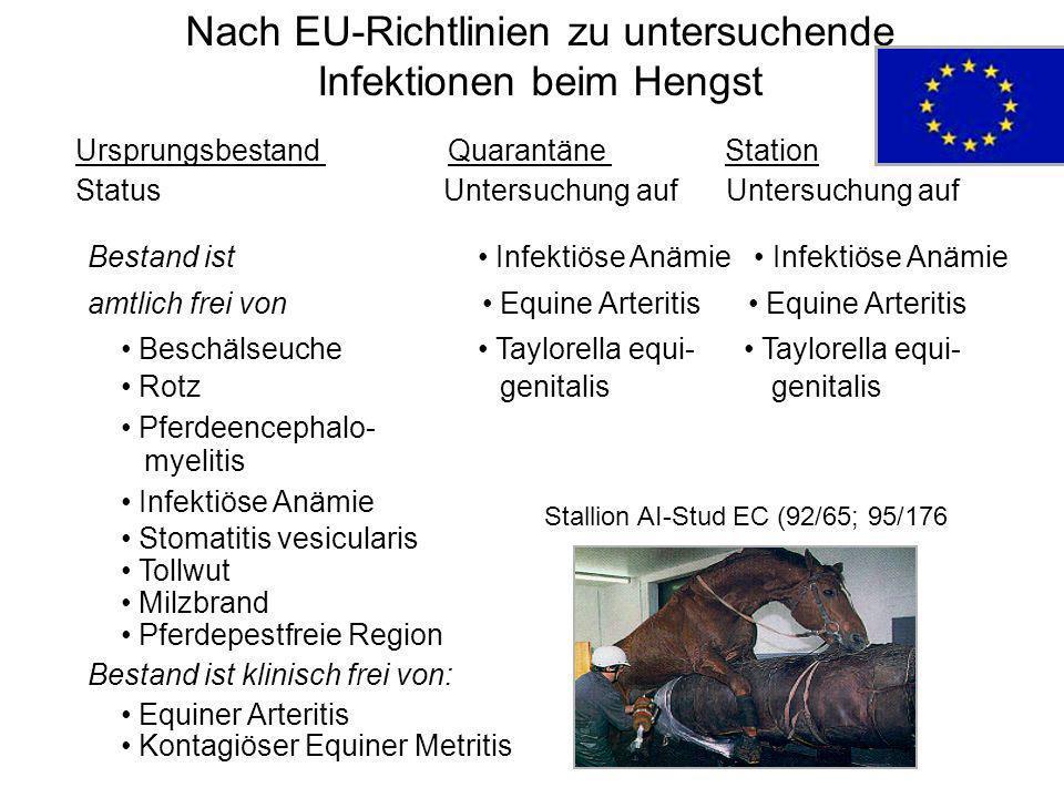 Nach EU-Richtlinien zu untersuchende Infektionen beim Hengst Ursprungsbestand Quarantäne Station Status Untersuchung auf Untersuchung auf Bestand ist