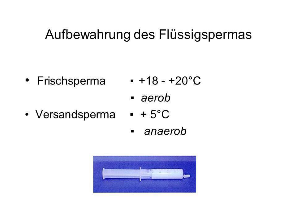 Aufbewahrung des Flüssigspermas Frischsperma +18 - +20°C aerob Versandsperma + 5°C anaerob