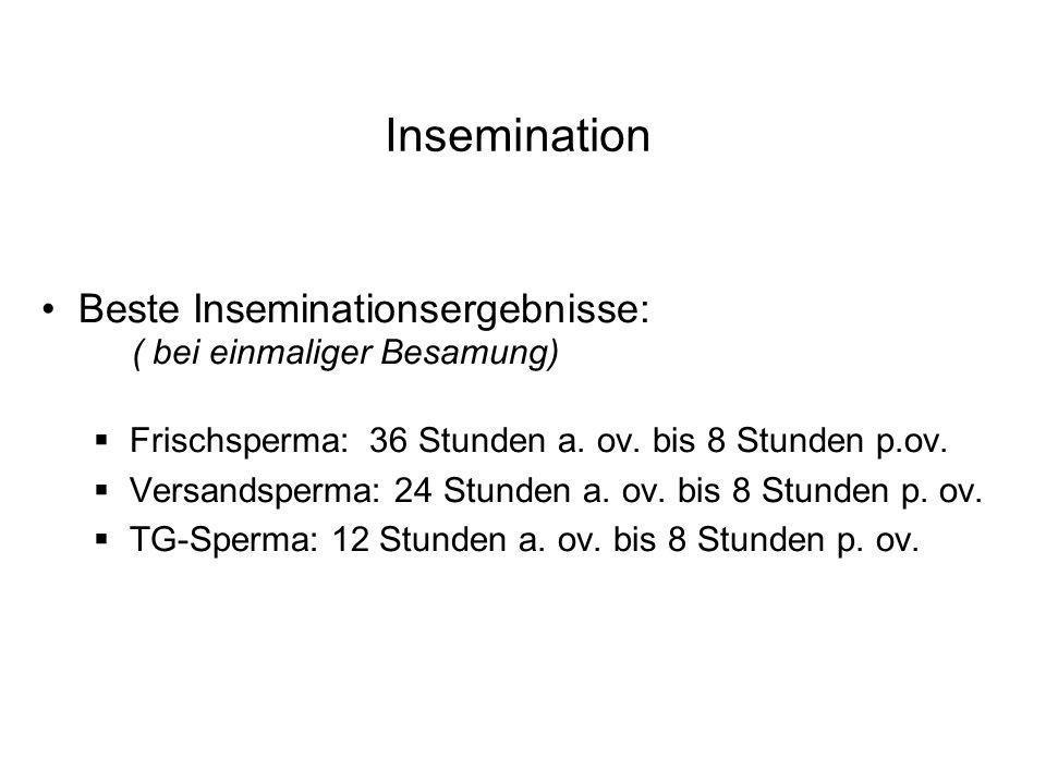 Insemination Beste Inseminationsergebnisse: ( bei einmaliger Besamung) Frischsperma: 36 Stunden a. ov. bis 8 Stunden p.ov. Versandsperma: 24 Stunden a
