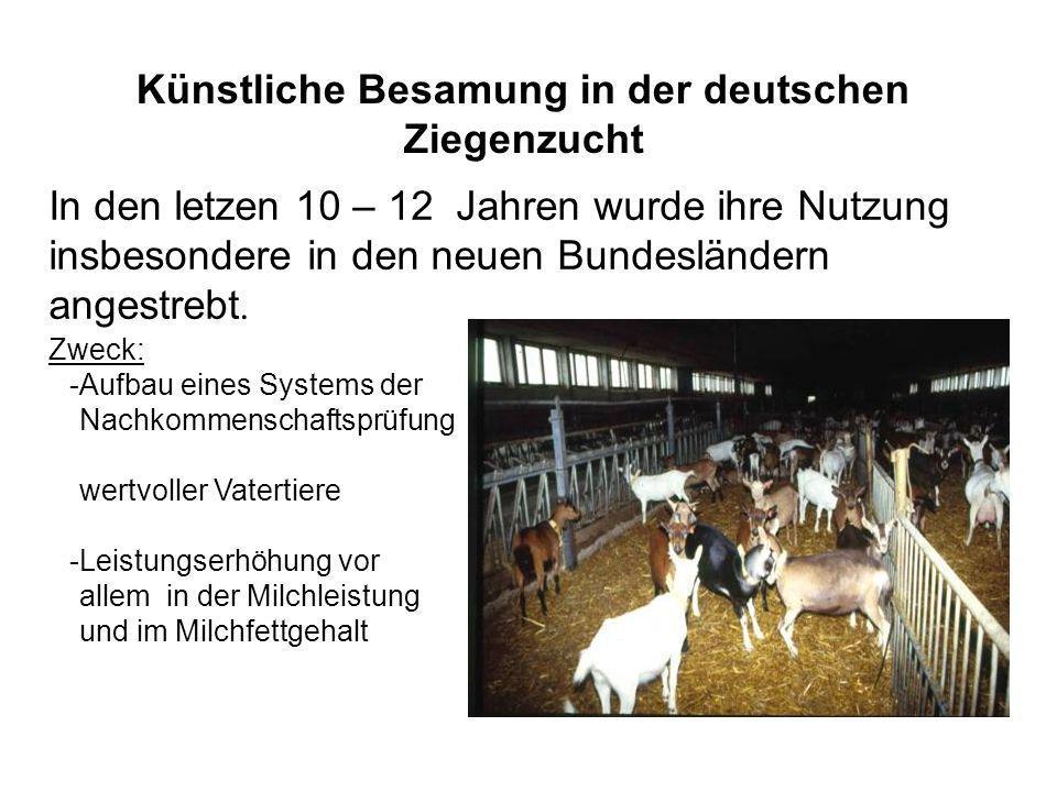 Künstliche Besamung in der deutschen Ziegenzucht In den letzen 10 – 12 Jahren wurde ihre Nutzung insbesondere in den neuen Bundesländern angestrebt. Z