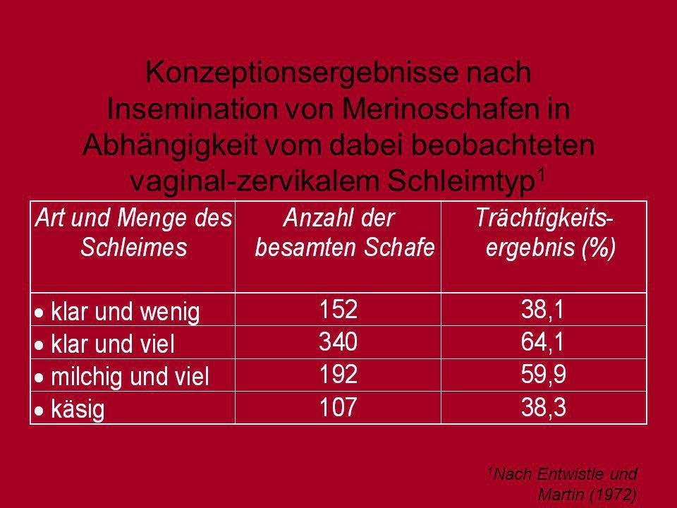 Konzeptionsergebnisse nach Insemination von Merinoschafen in Abhängigkeit vom dabei beobachteten vaginal-zervikalem Schleimtyp 1 1 Nach Entwistle und