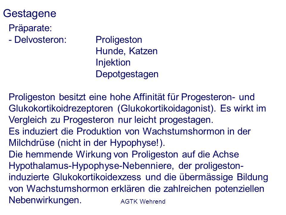 AGTK Wehrend Gestagene Präparate: - Delvosteron: Proligeston Hunde, Katzen Injektion Depotgestagen Proligeston besitzt eine hohe Affinität für Progesteron- und Glukokortikoidrezeptoren (Glukokortikoidagonist).