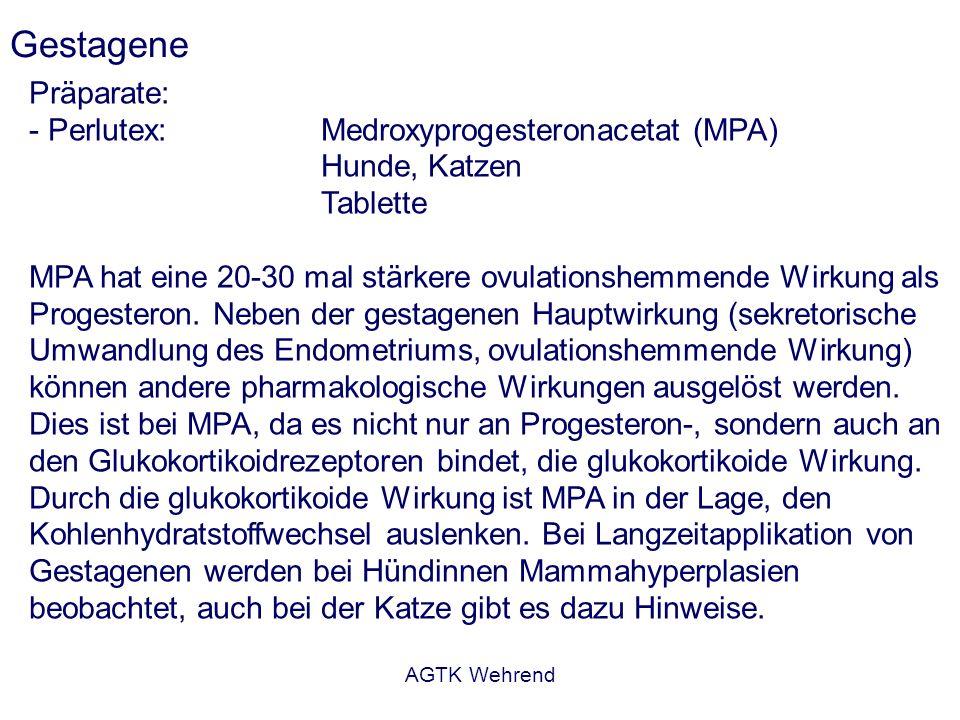 AGTK Wehrend Gestagene Präparate: - Perlutex: Medroxyprogesteronacetat (MPA) Hunde, Katzen Tablette MPA hat eine 20-30 mal stärkere ovulationshemmende Wirkung als Progesteron.