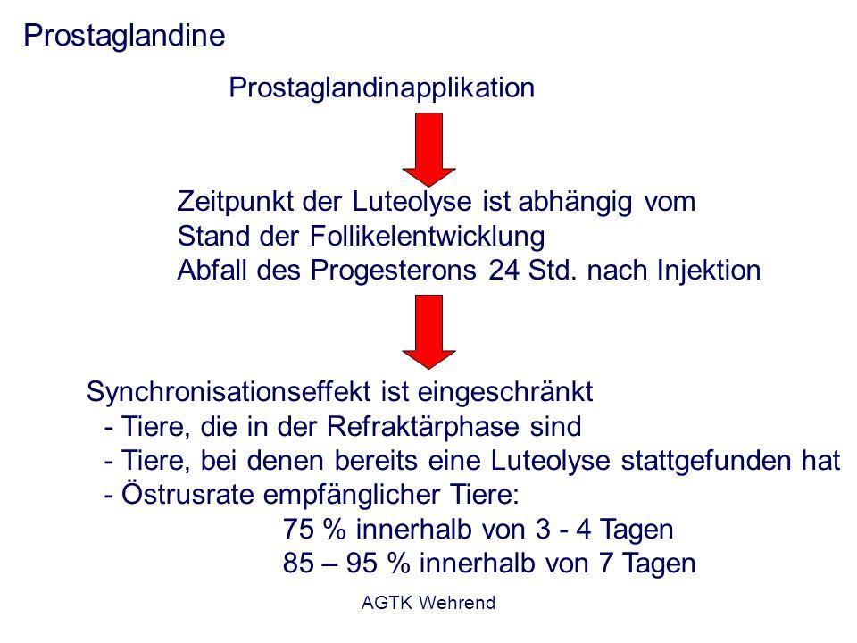 AGTK Wehrend Prostaglandine Prostaglandinapplikation Zeitpunkt der Luteolyse ist abhängig vom Stand der Follikelentwicklung Abfall des Progesterons 24 Std.