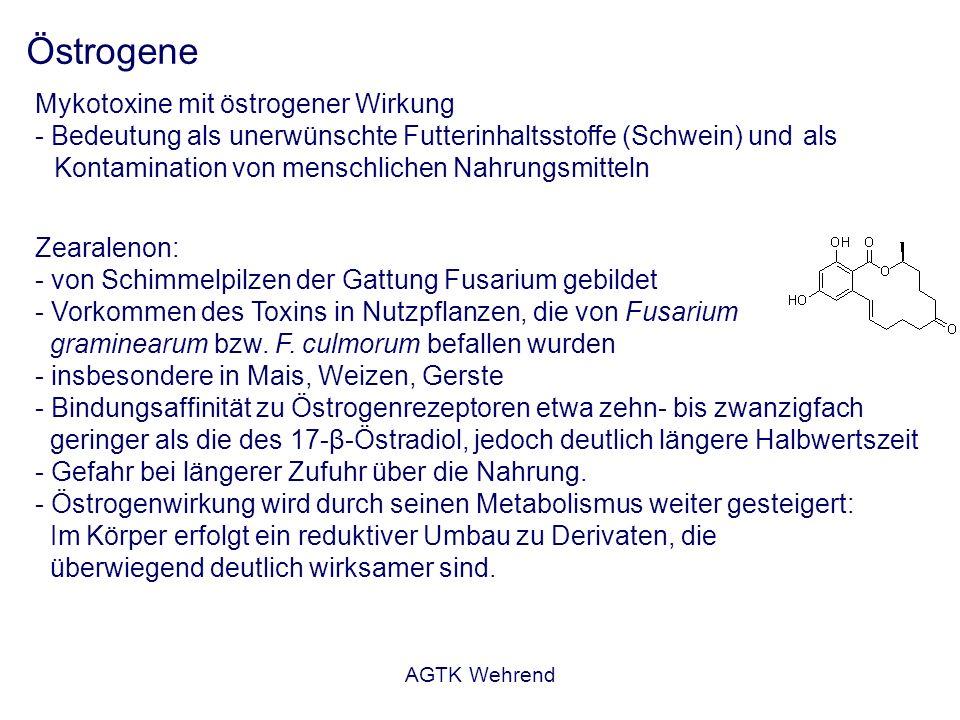 AGTK Wehrend Östrogene Mykotoxine mit östrogener Wirkung - Bedeutung als unerwünschte Futterinhaltsstoffe (Schwein) und als Kontamination von menschlichen Nahrungsmitteln Zearalenon: - von Schimmelpilzen der Gattung Fusarium gebildet - Vorkommen des Toxins in Nutzpflanzen, die von Fusarium graminearum bzw.