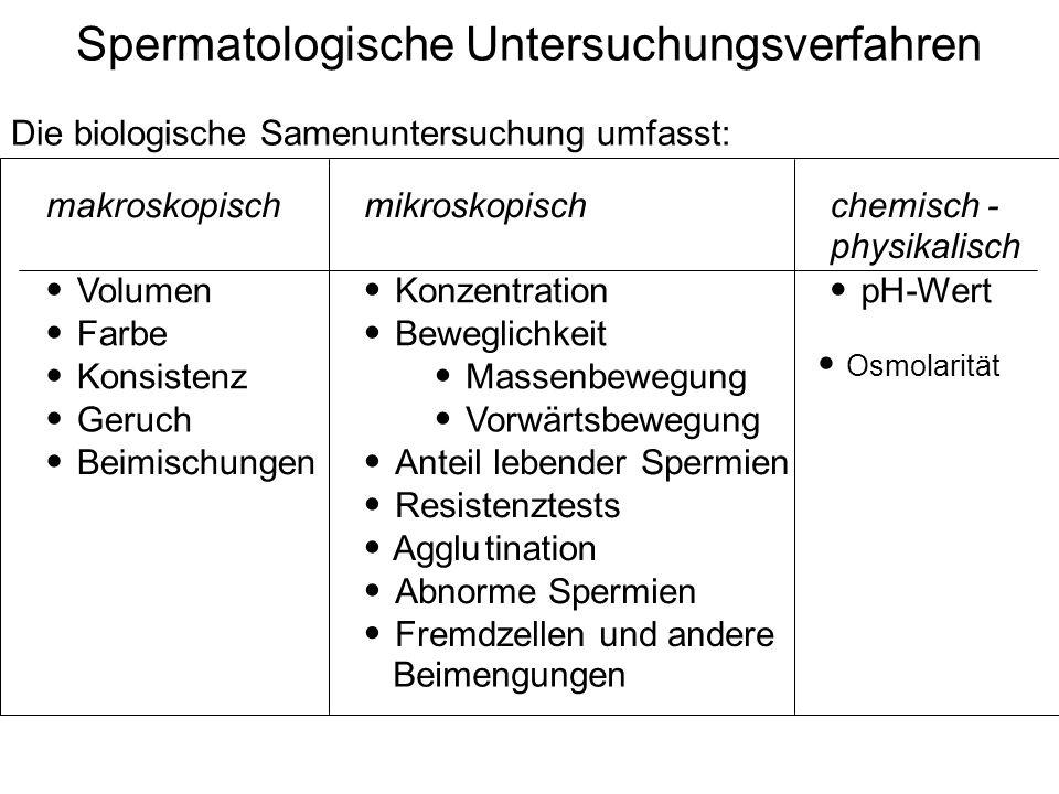 Spermatologische Untersuchungsverfahren Die biologische Samenuntersuchung umfasst: makroskopisch mikroskopisch chemisch- physikalisch Volumen Farbe Ko