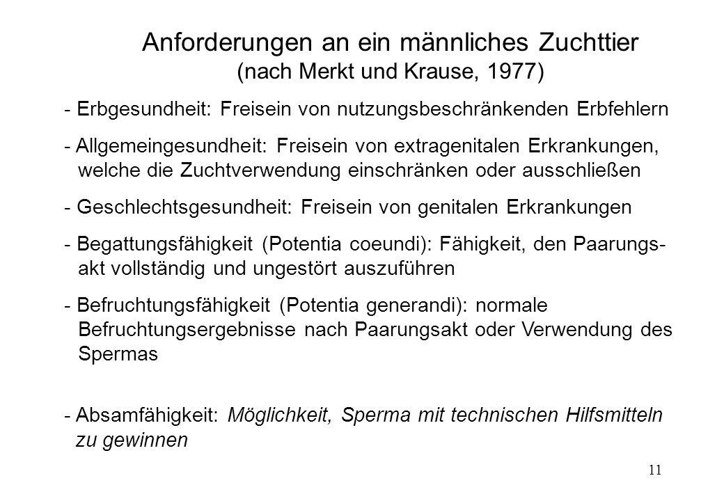 11 Anforderungen an ein männliches Zuchttier (nach Merkt und Krause, 1977) - Erbgesundheit: Freisein von nutzungsbeschränkenden Erbfehlern - Allgemein