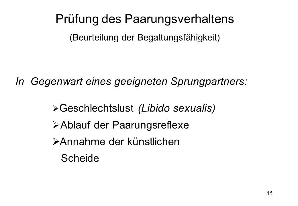 45 Prüfung des Paarungsverhaltens (Beurteilung der Begattungsfähigkeit) In Gegenwart eines geeigneten Sprungpartners: Geschlechtslust (Libido sexualis