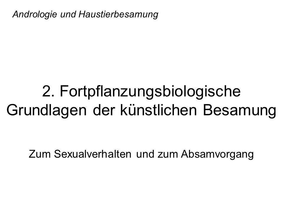 Andrologie und Haustierbesamung 2. Fortpflanzungsbiologische Grundlagen der künstlichen Besamung Zum Sexualverhalten und zum Absamvorgang
