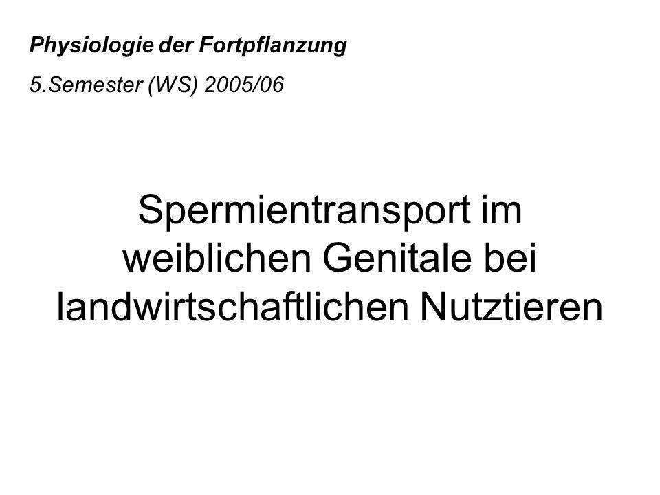 Physiologie der Fortpflanzung 5.Semester (WS) 2005/06 Spermientransport im weiblichen Genitale bei landwirtschaftlichen Nutztieren