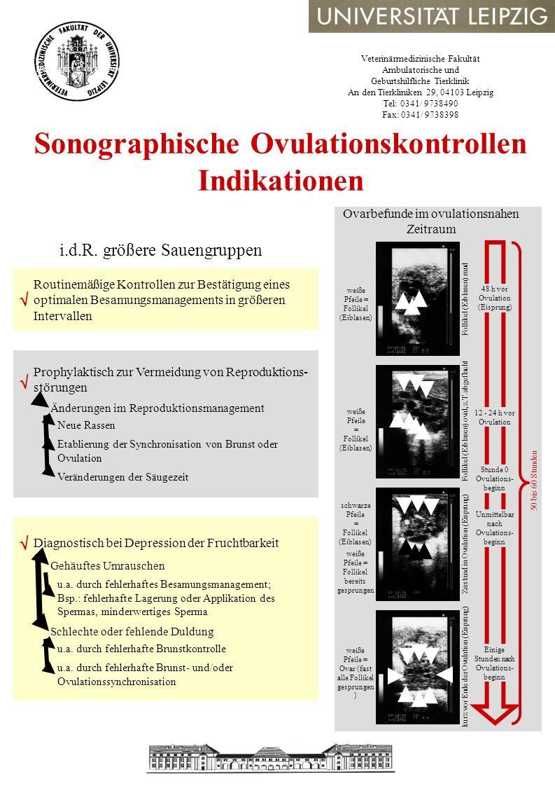 Veterinärmedizinische Fakultät Ambulatorische und Geburtshilfliche Tierklinik An den Tierkliniken 29, 04103 Leipzig Tel: 0341/ 9738490 Fax: 0341/ 9738