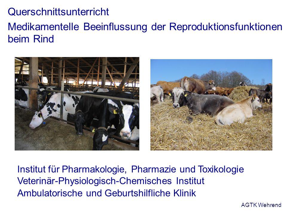 AGTK Wehrend Querschnittsunterricht Medikamentelle Beeinflussung der Reproduktionsfunktionen beim Rind Institut für Pharmakologie, Pharmazie und Toxik